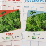 01 Red and Blue Rocket Seeds