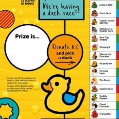 CiN Duck Race Sweepstake poster web